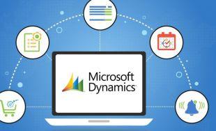 Las ventajas de contar con un proveedor de Microsoft Dynamics