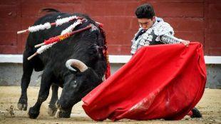 Rafael González muletea de rodillas a su segundo novillo, al que cortóñ una oreja