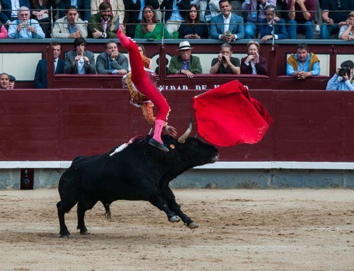 Grave cogida a Gonzalo Caballero en Las Ventas