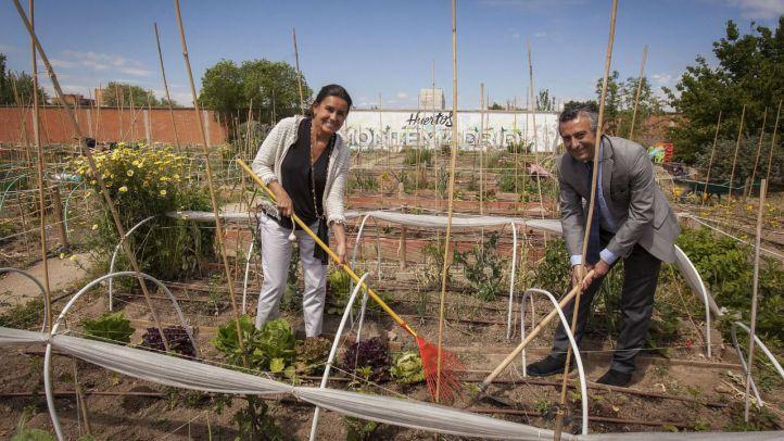 Bankia y Fundación Montemadrid destinan 165.000 euros a proyectos medioambientales en la región