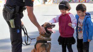 Intervención de niños con TEA junto a perros
