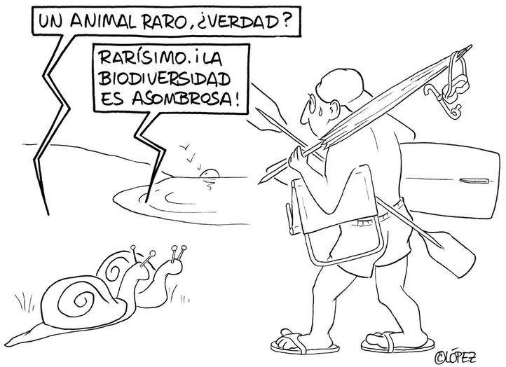 Una de las viñetas de López, recogidas en el libro ¡Houston, tenéis un problema!