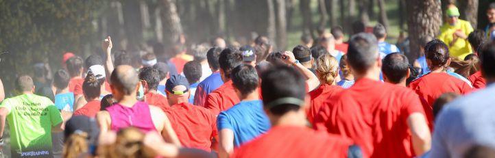 Deporte, cultura y actividades al aire libre en Las Rozas