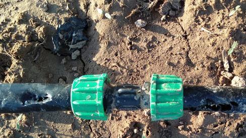 Una de las tuberías mordida por un mapache en la vega del Jarama