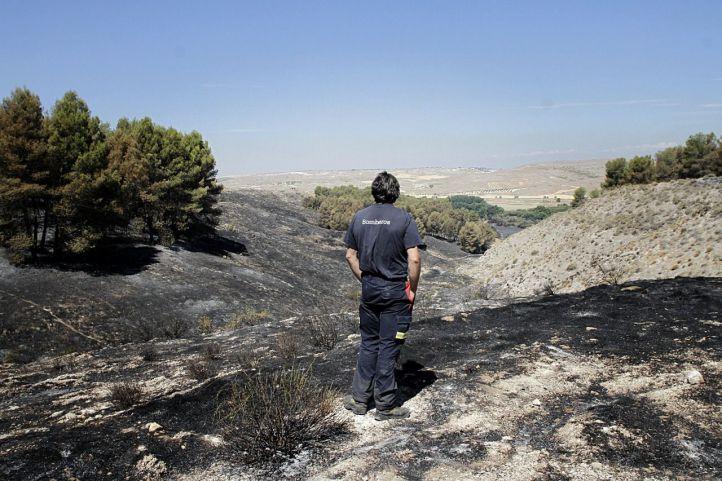 Caen un 11% los incendios forestales en la región y la mitad son provocados