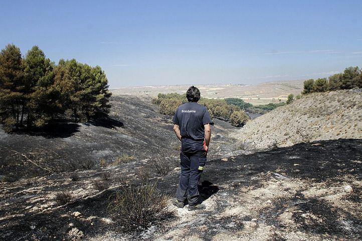 Incendio forestal en el parque regional del sureste en el municipio de Rivas