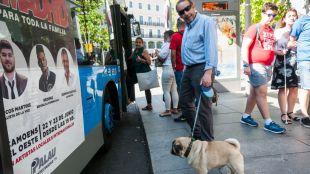 Un hombre con su perro frente a un autobús de la EMT.