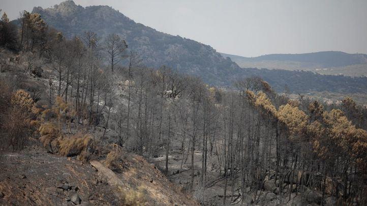 Varias dotaciones de Bomberos y Vigilancia continúan las labores de extinción del fuego de Cadalso