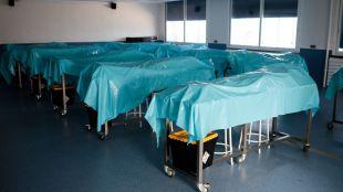 Procesado el exdirector de Anatomía II de la Complutense por la acumulación de cuerpos