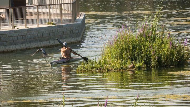 Un usuario de las piraguas del lago, junto a una de las islas colocadas.