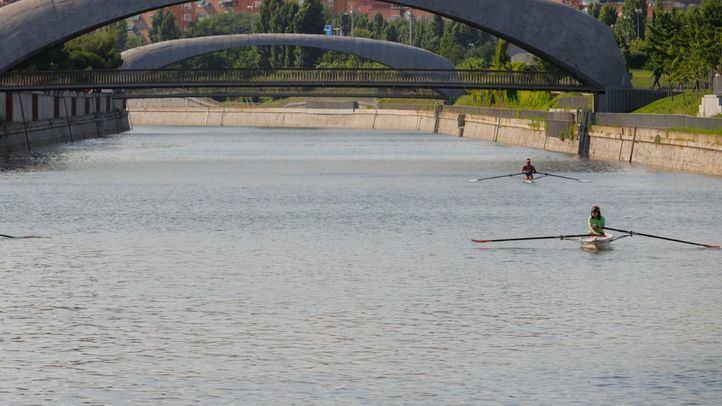 Varios remeros practicando en la aguas del Manzanares.