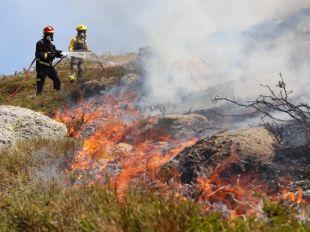 Balance de dos incendios provocados: 900 hectáreas arrasadas