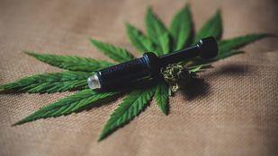 El cannabis con CBD, una planta para uso terapéutico en auge