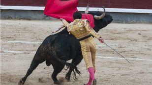No se celebran festejos taurinos en el coso complutense desde 2015.