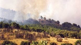 El 20 de agosto se cumplen 20 años del incendio del monte Abantos.
