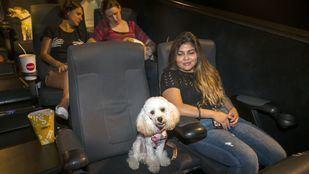 Sesión de cine petfriendly en el estreno de Mascotas 2