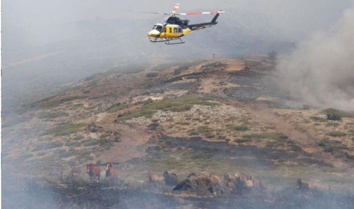 Un piloto de helicóptero salva a 27 caballos del incendio en Guadarrama