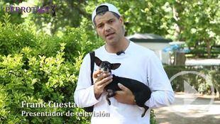 Varios famosos se suman al próximo Perrotón contra el abandono de animales