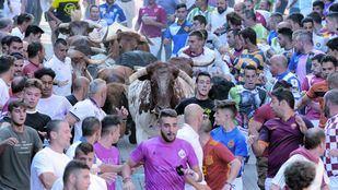 Encierros de San Sebastián de los Reyes 2019.