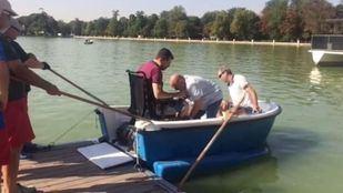 Las barcas a remo de El Retiro, accesibles a sillas de ruedas motorizadas