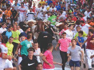 Último encierro de las fiestas de 2019 de San Sebastián de los Reyes.