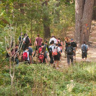 Senderistas voluntarios baten el monte en busca de la exesquiadora