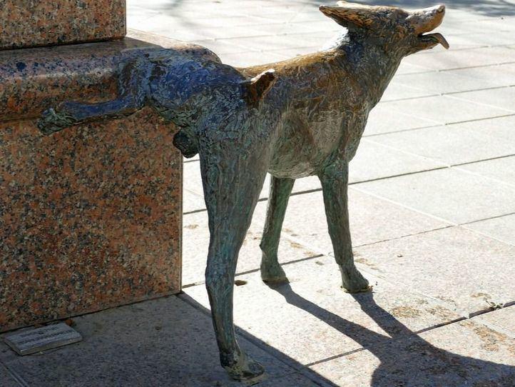 Valencia obligará a los dueños de los perros a lavar los orines de sus mascotas