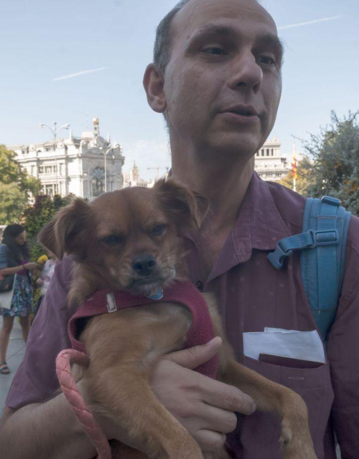 Las mascotas de los desalojados, desamparadas