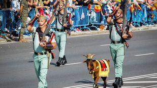 La cabra de la Legión, en el desfile del 12 de Octubre.