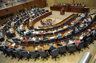El Pleno de la Asamblea de Madrid discute el número de altos cargos necesarios en el Gobierno de la Comunidad