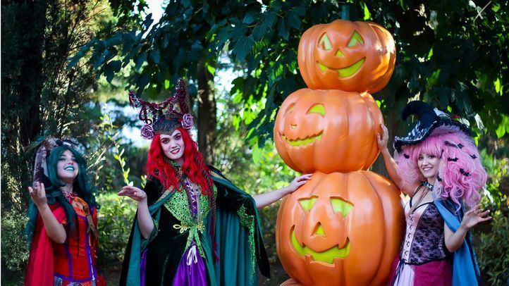 Cuatro pasajes del terror exclusivos y espectáculos musicales en Parque Warner