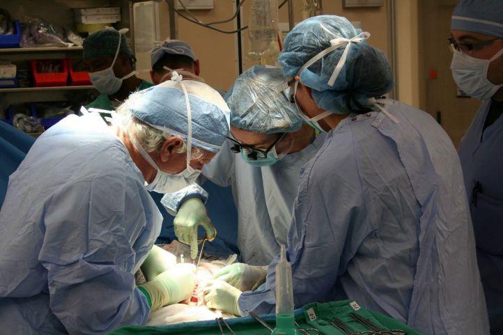 El riñón, el órgano más trasplantado en España (y sin apenas espera)