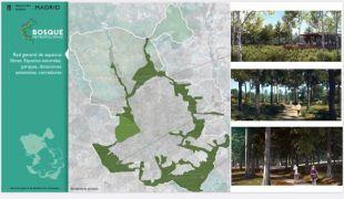 Recreación del futuro bosque metropolitano, que rodeará Madrid a través de 75 kilómetros y costará 75 millones.