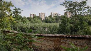 El Bosque Metropolitano costará 75 millones y comenzará a plantarse el próximo octubre