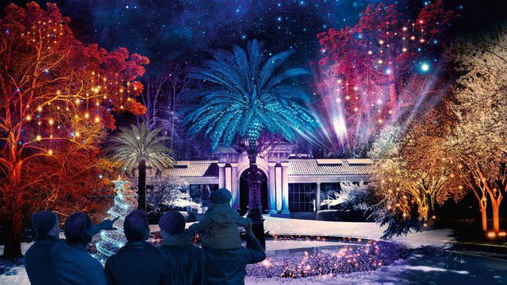 Navidad en el Jardín Botánico: un paseo nocturno de luces y flora