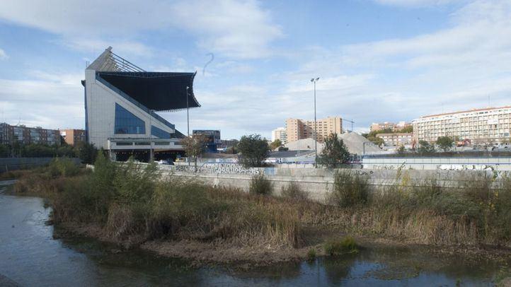 Las nutrias del Manzanares no cuentan en el derribo del estadio