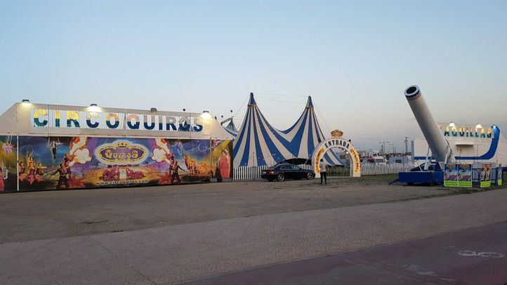 El fin de los circos con animales en Madrid llegará en abril de 2020