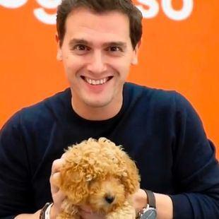 Meme de Albert Rivera junto al perro Lucas