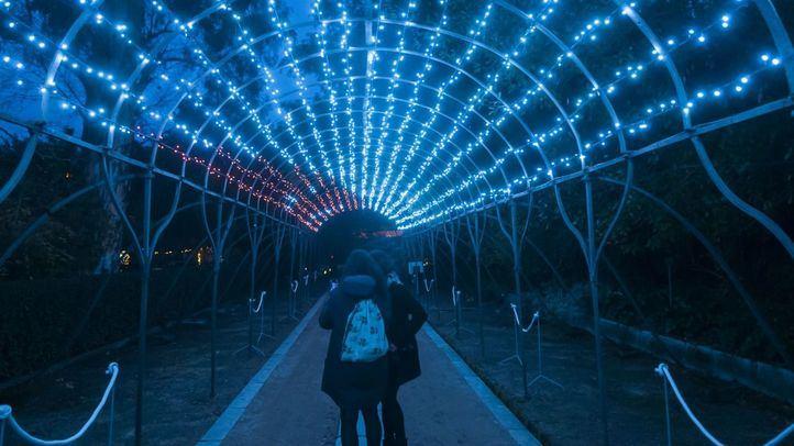 Expectación en el Botánico por las luces navideñas