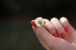 Combate las uñas débiles de manera eficaz