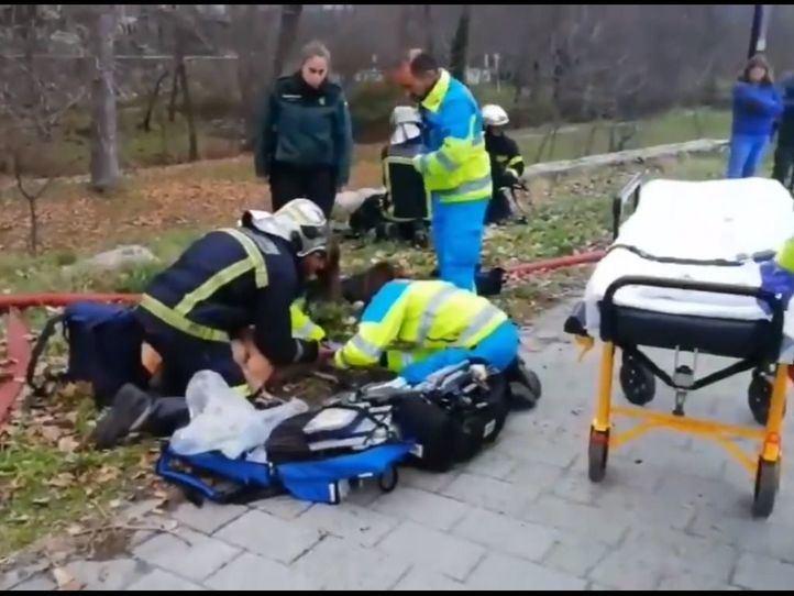 Los bomberos y sanitarios han conseguido salvar la vida del can