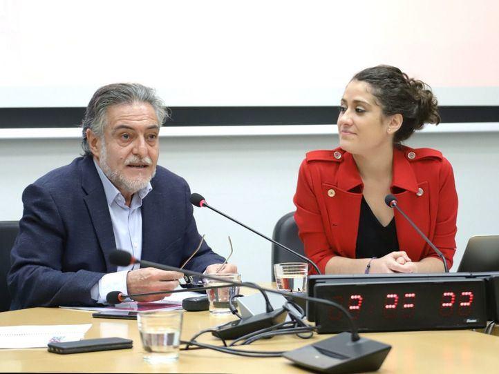 El PSOE pide revitalizar la Cuesta de Moyano y construir 20 escuelas infantiles