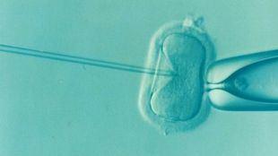 Cómo encontrar las mejores clínicas de fertilidad en Madrid