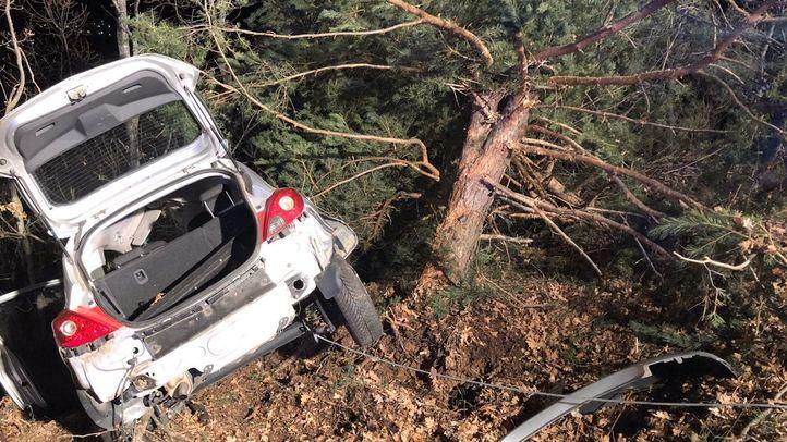 El coche se salió de la vía e impactó contra un árbol