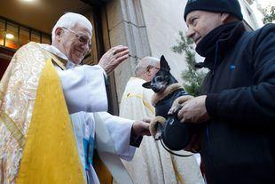 Desfile de mascotas, panecillos y conferencias por San Antón