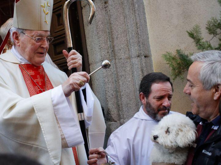 El cardenal Carlos Amigo bendice a una mascota.