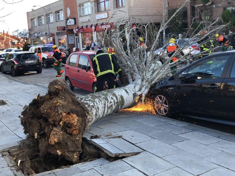 Madrid permanece en alerta ante las fuertes rachas de viento previstas