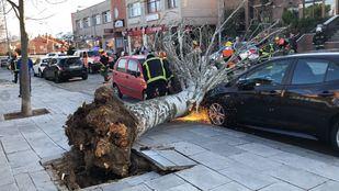 Fuertes rachas de viento y alertas de nieve en Madrid