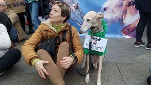 Manifestación contra la caza y el maltrato a los galgos y otras razas utilizadas en la caza