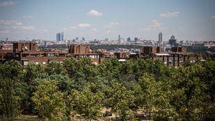 Madrid y Arroyomolinos obtienen la distinción de 'Ciudades Arboladas del Mundo'